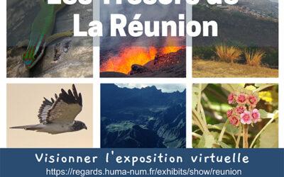 Exposition Les Trésors de La Réunion